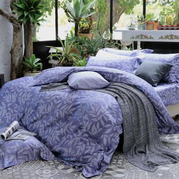 HOYA H Series華爾滋 加大四件式頂級500織匹馬棉被套床包組-贈蠶絲冬被