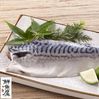 【鮮魚屋】100%挪威薄鹽鯖魚2L大規格220g*10片