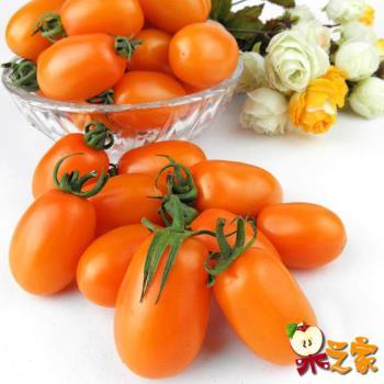果之家 美濃溫室優質橙蜜香小蕃茄5台斤禮盒