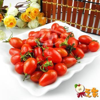 果之家 高雄美濃嚴選玉女小番茄5盒入(每小盒1台斤)