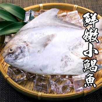 海鲜世家 严选鲜嫩白鲳 *8尾组(200g-300g/尾)(斗鲳)