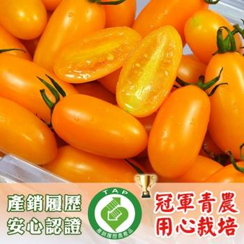 【鮮果有邑】美濃嚴選雙認證薄皮香甜爆汁金瑩小蕃茄禮盒1箱(共4斤)