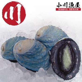 小川渔屋 极品新西兰活冻带壳鲍鱼5颗(80g/颗)