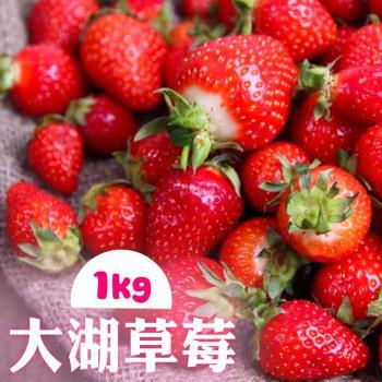 【家購網嚴選】大湖草莓_喝牛奶長大的豐香品種1kg(2~3號果)/盒