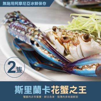 築地一番鮮-巨無霸斯里蘭卡公花蟹2隻(400g/隻)