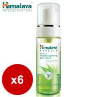 Himalaya喜馬拉雅 苦楝泡沫潔面幕斯 150ml(6入)