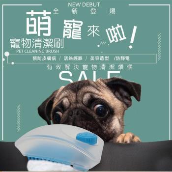 金德恩 專業沙龍級 梳毛寵物萬用清潔刷