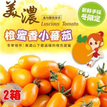 愛上新鮮 美濃鮮採橙蜜香小蕃茄 x1盒(禮盒裝/3斤裝) 共3斤