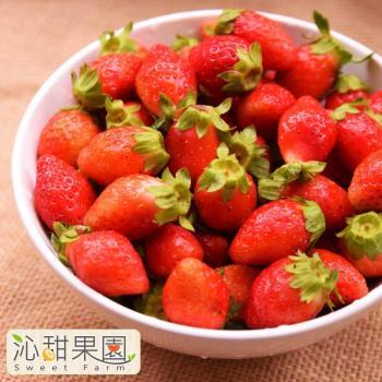 《沁甜果園SSN》苗栗大湖草莓-1號果(約600g±10%/盒,共2盒)