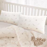 【奶油獅】星空飛行-台灣製造-美國抗菌表布雙道防蹣健康枕(2入)