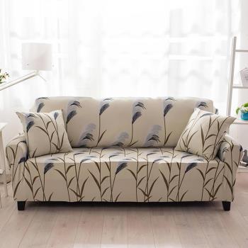 生活家飾-蘆葦之戀彈性沙發套3人座