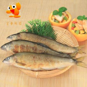 【金車】香魚(母魚/含卵x3)+香魚(公魚x2)超值組F