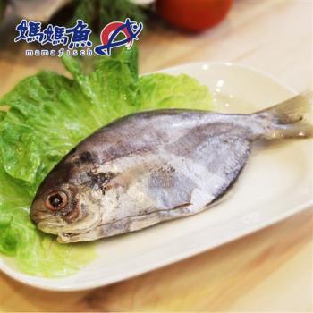 《媽媽魚N》台灣肉魚(100g/條,共三條)
