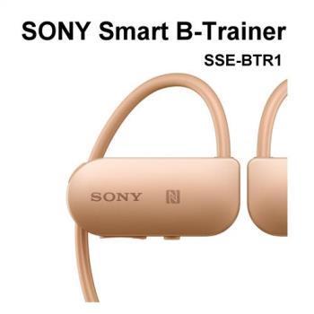 SONY SSE-BTR1運動耳機(公司貨)防水~可充當藍牙無線耳機輕鬆連結手機 MP3音樂播放器