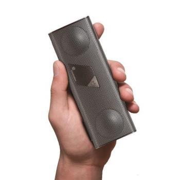 soundmatters foxL v2 apt-X platinum 白金銀