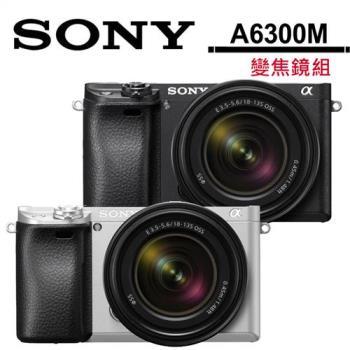 SONY A6300 + 18-135mm (A6300M) (公司貨)