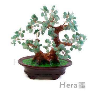 【HERA】正財滿溢東菱玉招財樹/發財樹(大)