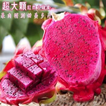 坤田水果 南投紅肉火龍果1箱(單箱10斤6-9顆)