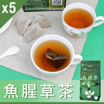 【Mr.Teago】魚腥草茶/養生茶/養生飲-3角立體茶包-5袋/組(30包/袋)
