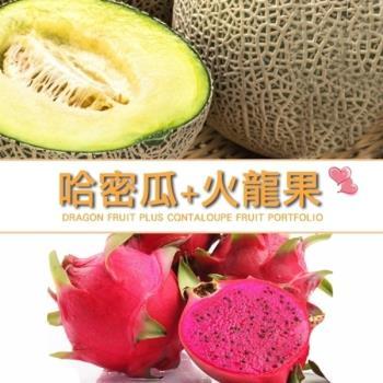 果物樂園-台灣紅肉火龍果+台灣哈密瓜(約3.6kg±10%)