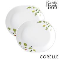 CORELLE康寧 綠野微風2件式腰子盤組(B03)