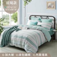 夢工場 遊園戲夢天絲頂規款兩用被鋪棉床包組-加大