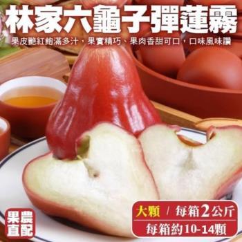 果農直配-六龜子彈蓮霧大顆1箱(10-14入/2kg/箱)