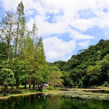 宜蘭 牽罟體驗+福山植物園二日旅遊-雙人券(週三出發)