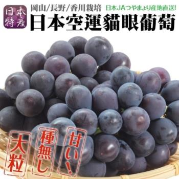 果物樂園-日本岡山貓眼葡萄原裝(1房/約700g±10%含盒重)