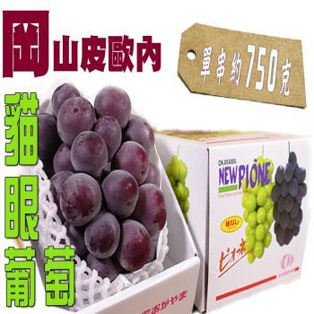 坤田水果 日本直送 巨大爆甜貓眼葡萄(6箱)單箱750克