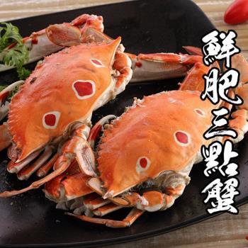 海鮮王 特選鮮肥三點蟹 10隻組(淨重100-150g/隻)