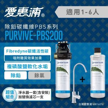 EVERPURE 愛惠浦 公司貨 PURVIVE-PBS200精選超值組