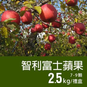 築地一番鮮-特大智利富士蘋果1盒(2.5kg/禮盒/7-9顆)