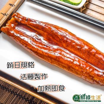 鮮綠生活 大份量日式蒲燒鰻魚3尾(200g/尾)