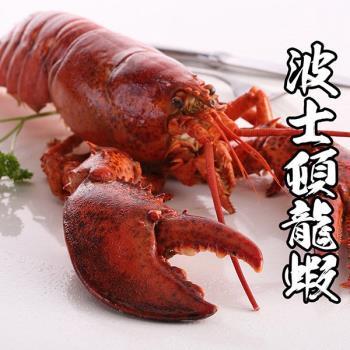 海鮮王 加拿大進口波士頓龍蝦 4隻組(500g±10%/隻)