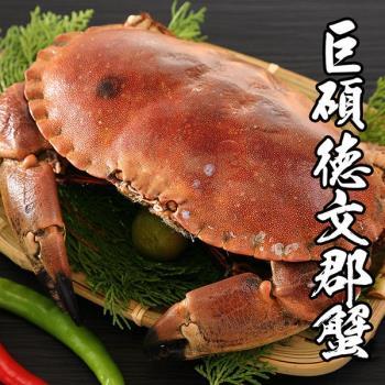 海鮮王 英國巨碩德文郡蟹 4隻組(800-900g±10%/隻)