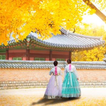 賞楓限定-首爾紫芒慶典愛寶洪川銀杏林韓服米其林饗宴6日旅遊