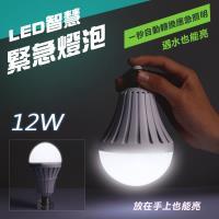 LED智慧緊急燈泡12W(一組兩入)