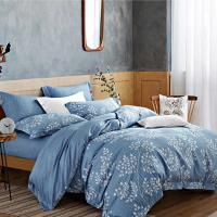 幸運草-藍秋谷 萊賽爾吸濕排汗親膚天絲雙人八件式床罩組-獨立筒適用