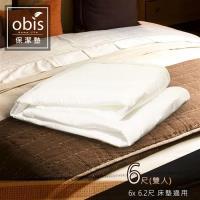 保潔墊 Gale床包式保潔墊 雙人加大6×6.2尺 obis
