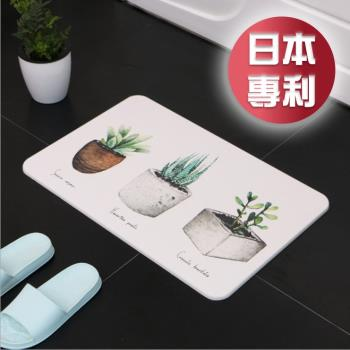 媽媽咪呀 職人手作日本熱銷珪藻土地墊H1_多肉植物-綠意