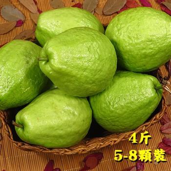 坤田水果 珍珠芭樂(1箱)單箱4斤5顆-8顆