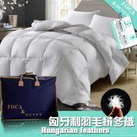 FOCA五星等級-匈牙利100%天然水鳥羽毛絨暖冬被-加碼送雪絨棉被套x1 台灣製造