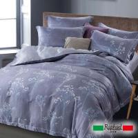 Raphael拉斐爾 優雅 天絲雙人四件式床包兩用被套組