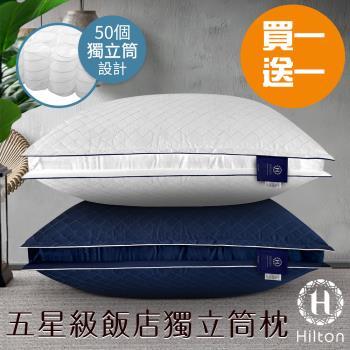 HILTON 希爾頓  純棉獨立筒枕 VIP貴賓 立體銀離子抑菌 2入組