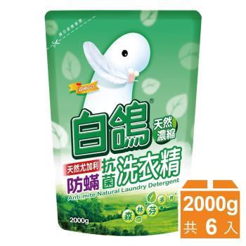 白鴿 天然抗菌洗衣精補充包2000gx6包- 尤加利防蟎