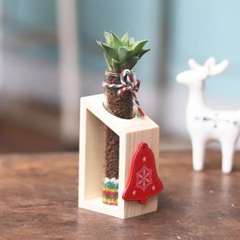 【Light+Bio】耶誕木架植栽-多肉植物