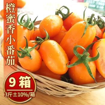 美濃宋媽媽超人氣橙蜜香小番茄禮盒(3斤±10%/盒) x9盒
