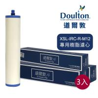 DOULTON英國道爾敦 XSL-IRC-R-M12 櫥下濾水器專用樹脂濾芯 - 三入組▲新螺牙專用