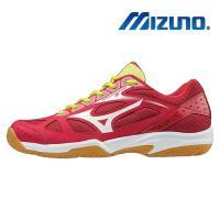 Mizuno 美津濃 CYCLONE SPEED 男女 排羽球鞋 V1GA198001